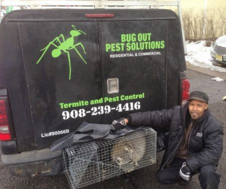 Bugout Pest Solutions LLC